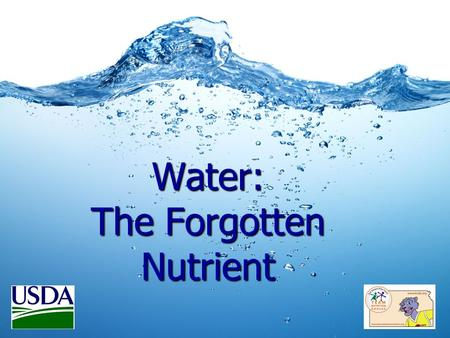 Water: The Forgotten Nutrient. 6 Essential Nutrients: Carbohydrates Carbohydrates Protein Protein Fats Fats Vitamins Vitamins Minerals Minerals WATER.