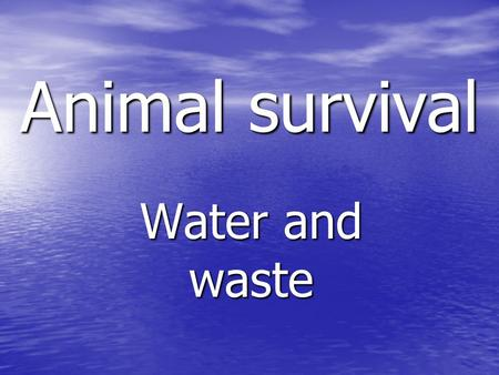 Animal survival Water and waste. Aims of today… To be able to: Identify ways in which a mammal gains and loses water. Identify ways in which a mammal.