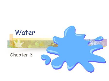 Water Chapter 3. Water Life began in water 2/3s of an organisms body Organisms grow or reproduce in a water-rich environment.