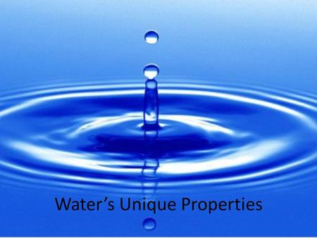 Water's Unique Properties