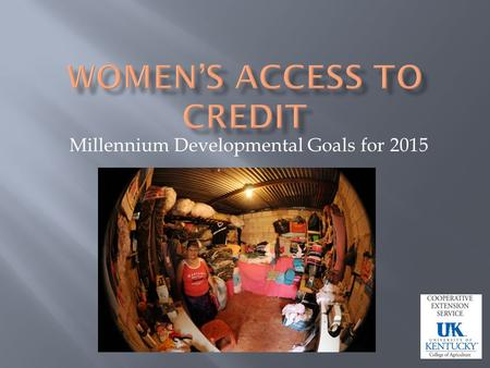 Millennium Developmental Goals for 2015. Promote Gender Equality and Empower Women Increase womens access to credit.