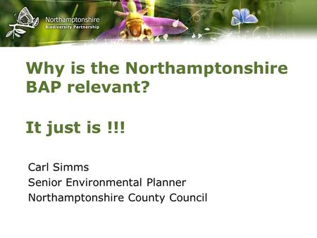 Why is the Northamptonshire BAP relevant? Carl Simms Senior Environmental Planner Northamptonshire County Council It just is !!!
