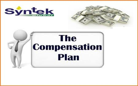 There are 8 ways to earn with Syntek Global!
