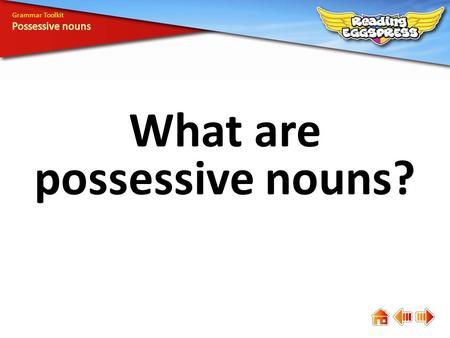 What are possessive nouns?
