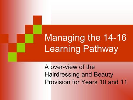 Managing the 14-16 Learning Pathway A over-view of the Hairdressing and Beauty Provision for Years 10 and 11.