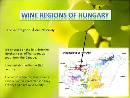 It is situated on the hillside in the Northern part of Transdanubia, south from the Danube. It was established in the 19th century. The wines of the territory.
