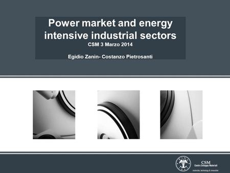 Power market and energy intensive industrial sectors CSM 3 Marzo 2014 Egidio Zanin- Costanzo Pietrosanti.