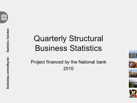 Quarterly Structural Business Statistics Project financed by the National bank 2010.