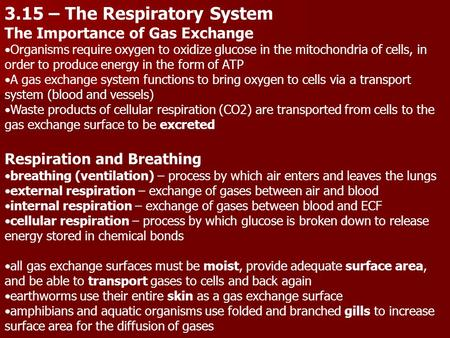 3.15 – The Respiratory System