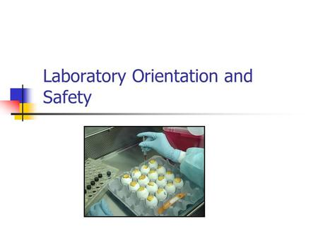 Laboratory Orientation and Safety. Prevention of physical injuries and laboratory acquired infections with zoonotic disease agents Laboratory safety is.