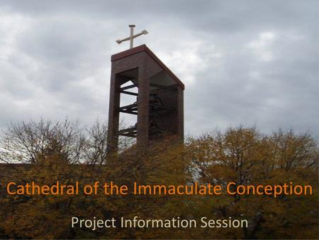 Cathedral of the Immaculate Conception Project Information Session.
