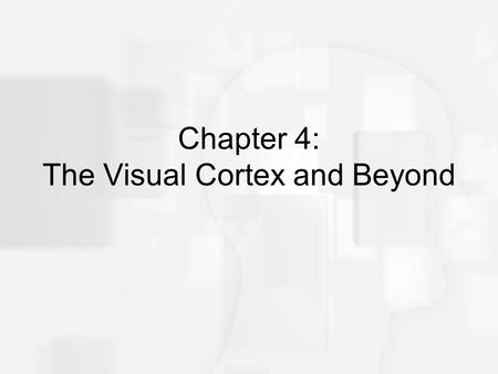 Chapter 4: The Visual Cortex and Beyond