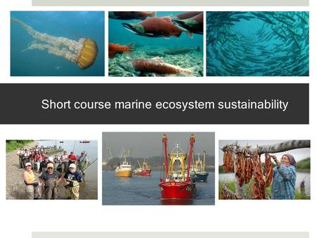 Short course marine ecosystem sustainability. Motivation Holistic approach to management addresses biophysical and social complexities Social-ecological.