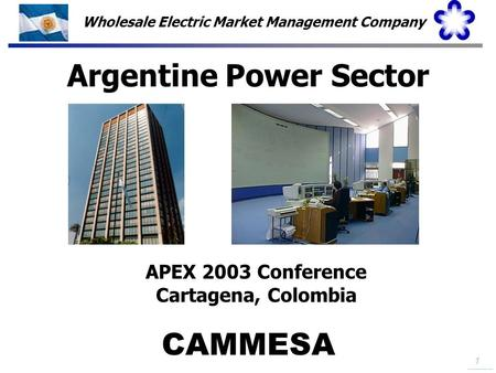 Argentine Power Sector