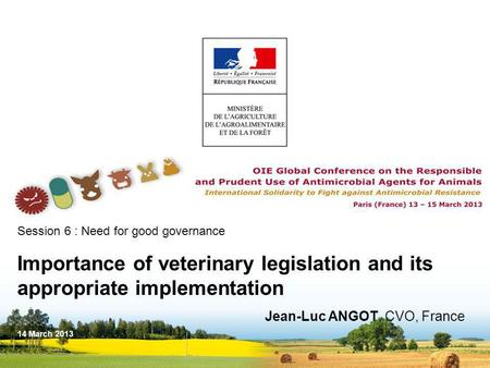 Session 6 : Need for good governance Importance of veterinary legislation and its appropriate implementation Jean-Luc ANGOT, CVO, France 14 March 2013.