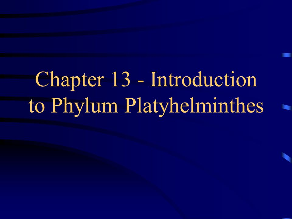 platyhelminthes ppt)