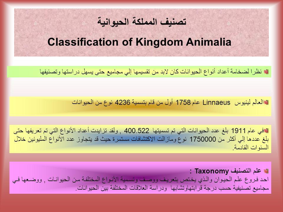 تصنيف المملكة الحيوانية Classification Of Kingdom Animalia Ppt Download