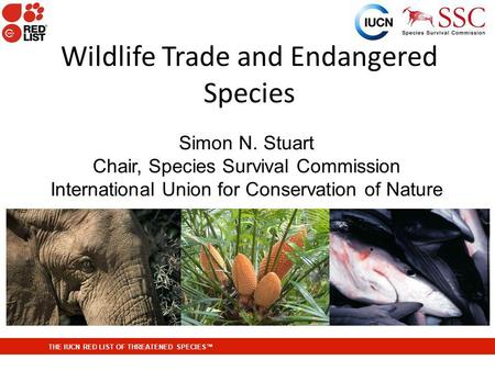 THE IUCN RED LIST OF THREATENED SPECIES Wildlife Trade and Endangered Species Simon N. Stuart Chair, Species Survival Commission International Union for.