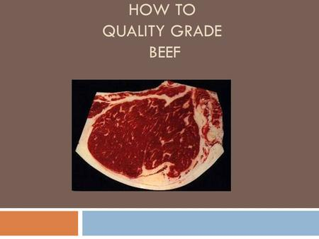 How to Quality Grade Beef