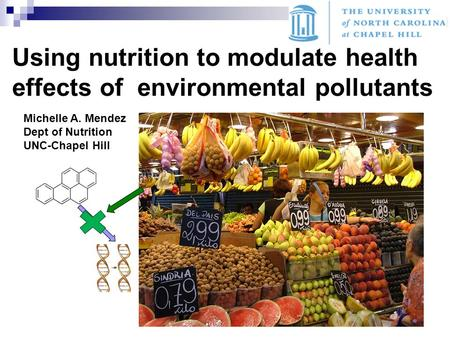 Using nutrition to modulate health effects of environmental pollutants Michelle A. Mendez Dept of Nutrition UNC-Chapel Hill.