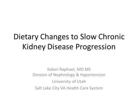 Dietary Changes to Slow Chronic Kidney Disease Progression
