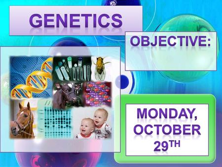 Genetics Objective: Monday, October 29th.