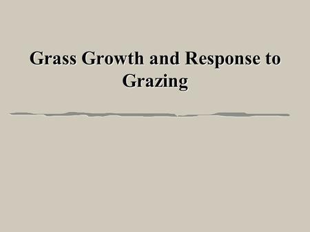 Grass Growth and Response to Grazing. Importance of Grasses l Grasses are the most abundant plant l Most of the energy and nutrients for livestock l Forage.