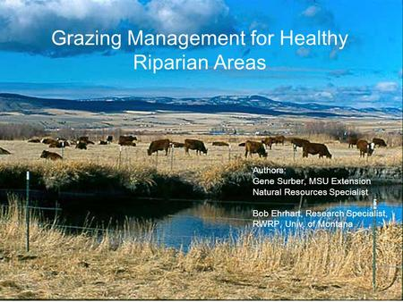 Grazing Management for Healthy Riparian Areas Authors: Gene Surber, MSU Extension Natural Resources Specialist Bob Ehrhart, Research Specialist, RWRP,