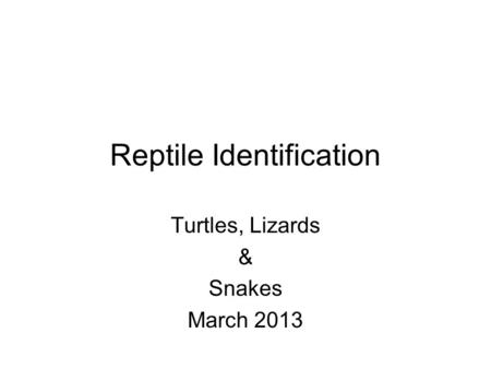 Reptile Identification Turtles, Lizards & Snakes March 2013.