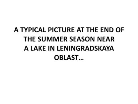 A TYPICAL PICTURE AT THE END OF THE SUMMER SEASON NEAR A LAKE IN LENINGRADSKAYA OBLAST…