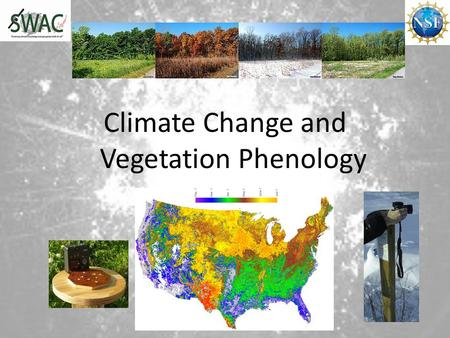 Climate Change and Vegetation Phenology