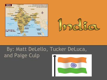 By: Matt DeLello, Tucker DeLuca, and Paige Culp. Government President: Pranab Kumar Mukherjee Prime Minister Manmohan Singh president's duties are mostly.