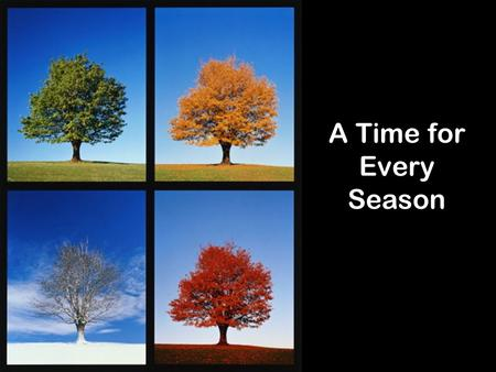 A Time for Every Season.
