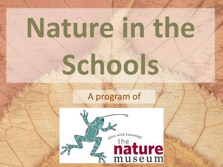 Nature in the Schools A program of. What is the Nature in the Schools Program? The model for The Nature Museum's Nature in the Schools program is a naturalist-in-residence.