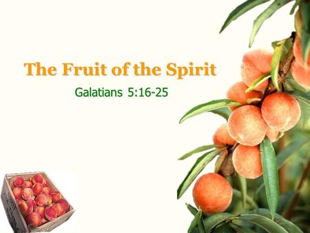 The Fruit of the Spirit Galatians 5:16-25. Galatians 2:16-25 Holman Christian Standard.