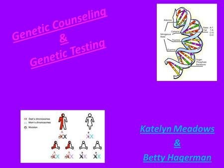 Genetic Counseling & Genetic Testing Katelyn Meadows & Betty Hagerman.