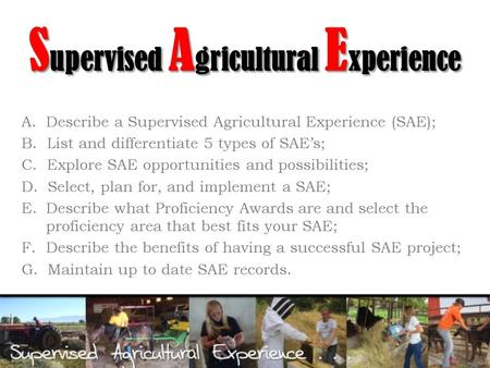 S upervised A gricultural E xperience A. Describe a Supervised Agricultural Experience (SAE); B. List and differentiate 5 types of SAE's; C. Explore SAE.