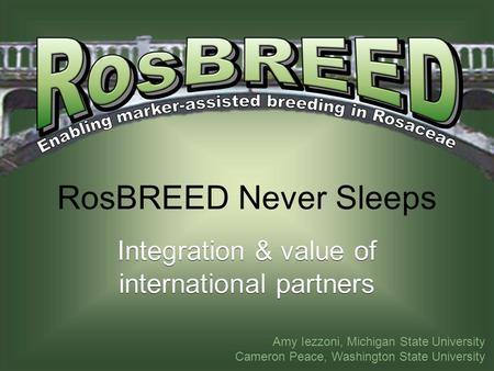 RosBREED Never Sleeps Integration & value of international partners Amy Iezzoni, Michigan State University Cameron Peace, Washington State University.