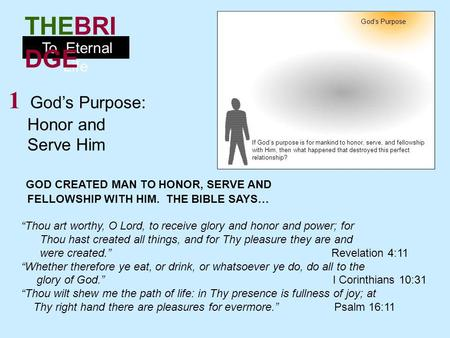 1 God's Purpose: Honor and Serve Him