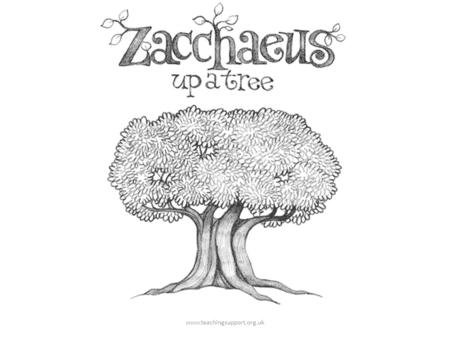 Www.teachingsupport.org.uk. ...you should know about Zacchaeus. Zacchaeus was a little man. And Zacchaeus was a rich man. And nobody liked him very much.