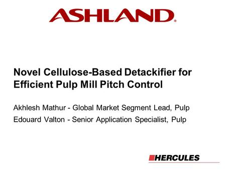 Akhlesh Mathur - Global Market Segment Lead, Pulp