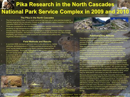 Additional Key Results Pika abundance in talus patches was negatively correlated with the minimum temperature recorded beneath the talus surface during.
