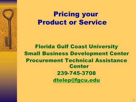 1 Pricing your Product or Service Florida Gulf Coast University Small Business Development Center Procurement Technical Assistance Center 239-745-3708.