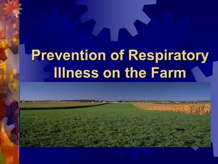 Prevention of Respiratory Illness on the Farm. Respiratory Hazards Dusts Dusts Gases / Vapors Gases / Vapors Chemicals Chemicals.