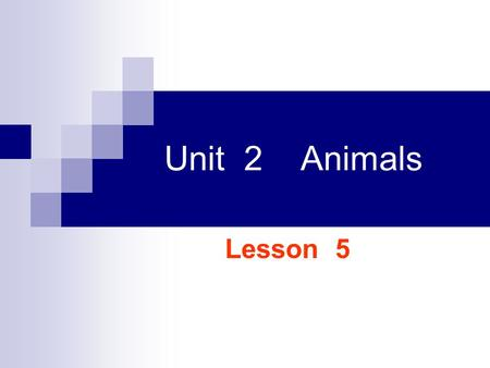 Unit 2 Animals Lesson 5 Whats the difference between two groups of animals?