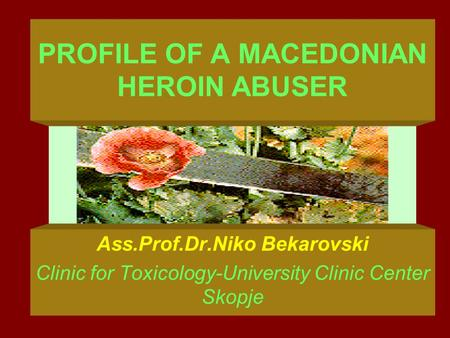 PROFILE OF A MACEDONIAN HEROIN ABUSER