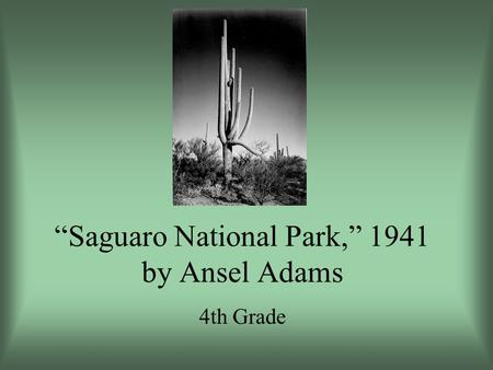 Saguaro National Park, 1941 by Ansel Adams 4th Grade.