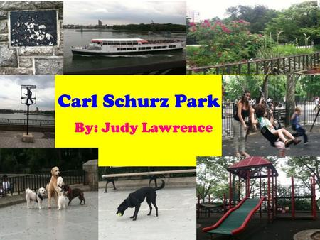 Carl Schurz Park By: Judy Lawrence. Carl Schurz Park was named after a man named Carl Schurz in 1910.