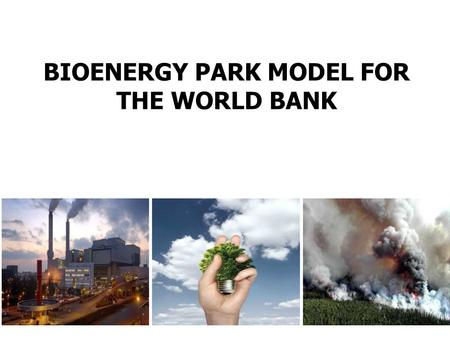 BIOENERGY PARK MODEL FOR THE WORLD BANK. Bioenergy Park for Poverty alleviation and job creation 1.