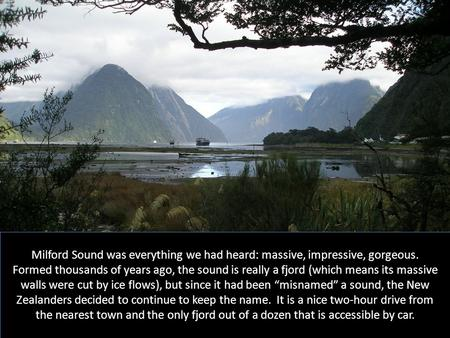 Milford Sound was everything we had heard: massive, impressive, gorgeous. Formed thousands of years ago, the sound is really a fjord (which means its massive.